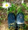 boots daisy