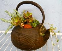 Rusty teapot = Succulent Tea Garden