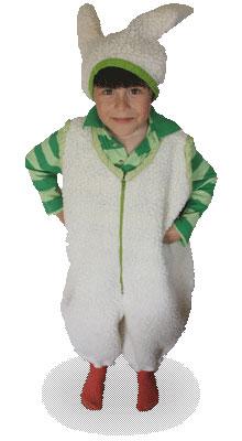 dex-bunny