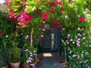 gardenfront