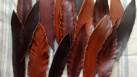 leatherfeathers