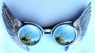 Goggle Wing Silver