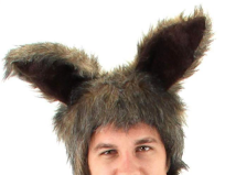 Furry Rabbit Brown