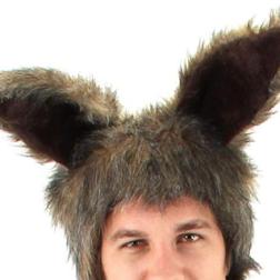 Furry Rabbit Brown